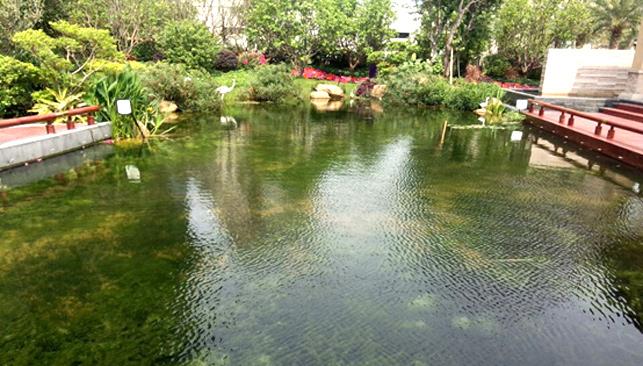 佛山顺德美的楼盘景观水项目