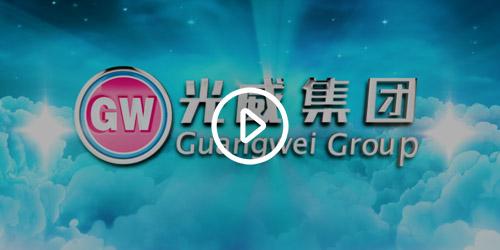 威海光威集团有限责任公司