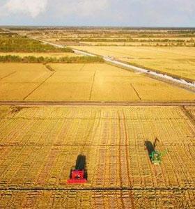 黑龍江阿爾伯塔農業服務有限公司