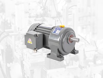 G(V) Medium gear motor