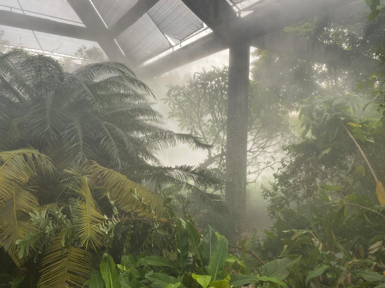 湛江南国热带花园喷雾降温系统