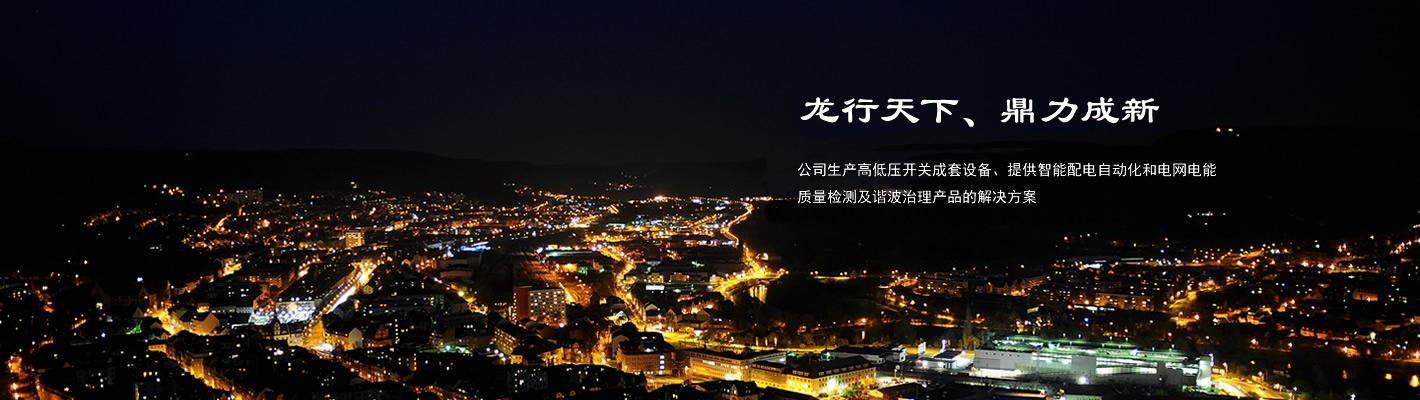 秦皇島龍鼎電氣有限公司