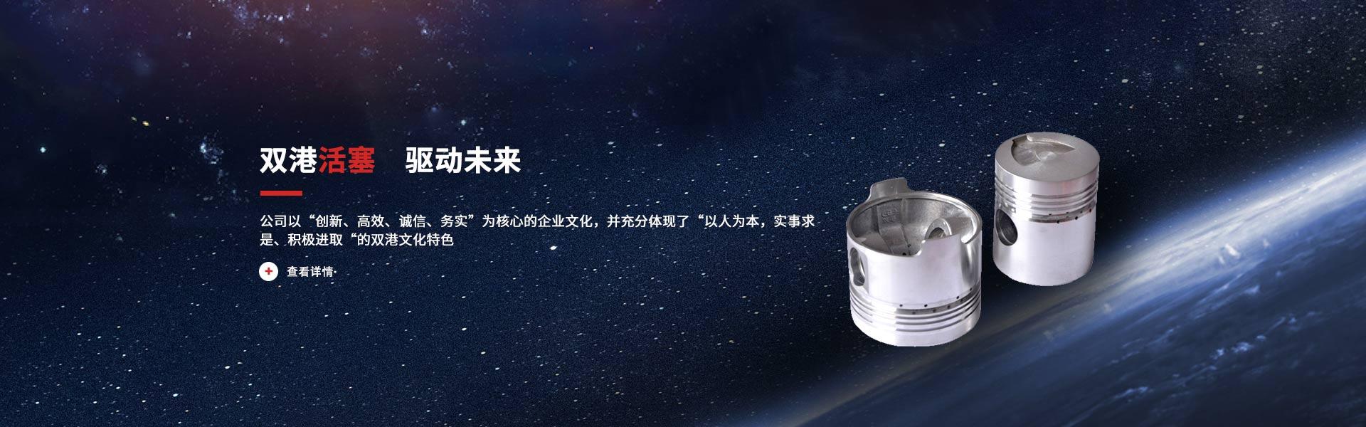 Shandong Shuanggang Piston Co., Ltd.