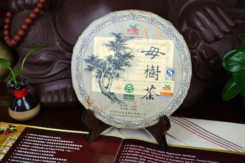 云宏母树茶