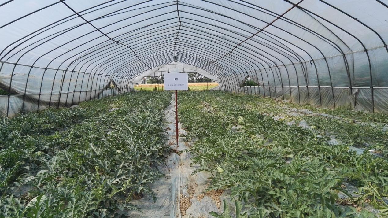 土壤改良修復劑產品功效及應用方向