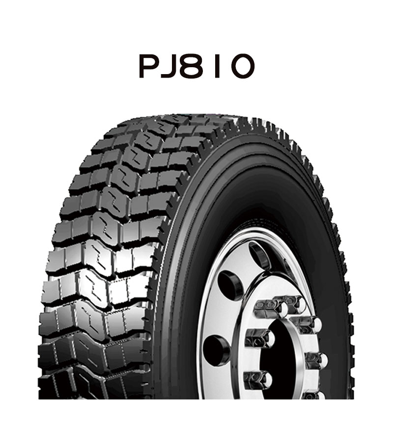 PJ810_1