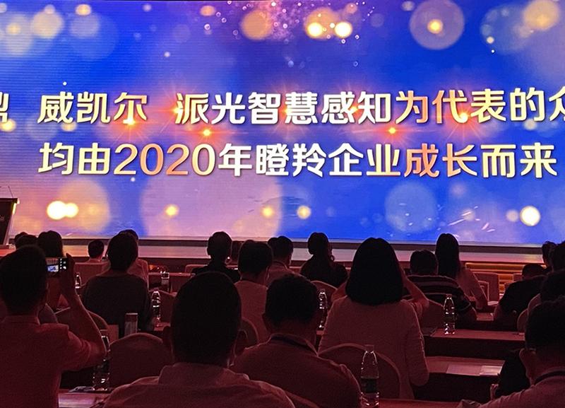 喜讯!威凯尔医药入选2021年度南京市培育独角兽企业