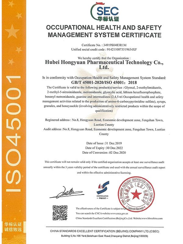 英文职业健康安全管理体系认证证书(20201202-20221230)