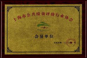 Member of Shanghai Public Performance Evaluation Association