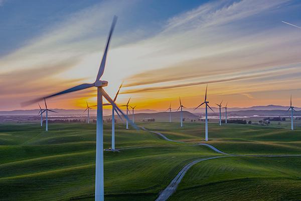 新能源領域