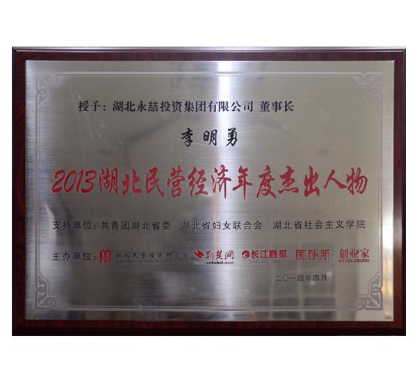2013年湖北民營經濟年度杰出人物