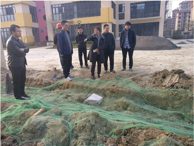 合肥市廬陽區重點工程建設管理中心桑麗萍局長一行廬陽區新建道路項目視察