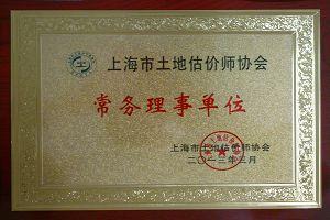 Executive director(Vice President) member of Shanghai Real Estate Valuer Association
