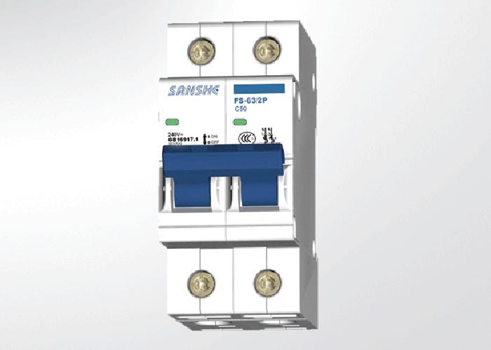 FS1-63/2P 塑料外殼斷路器
