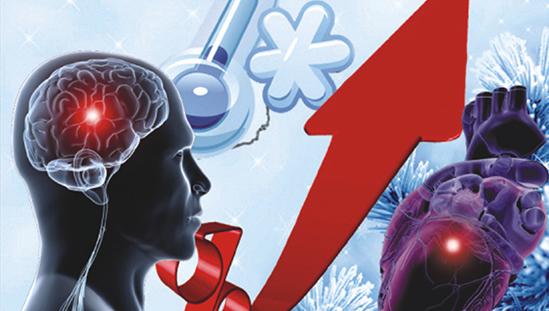 心腦血管系列