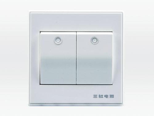 10A 250V~二位單控大按鍵開關